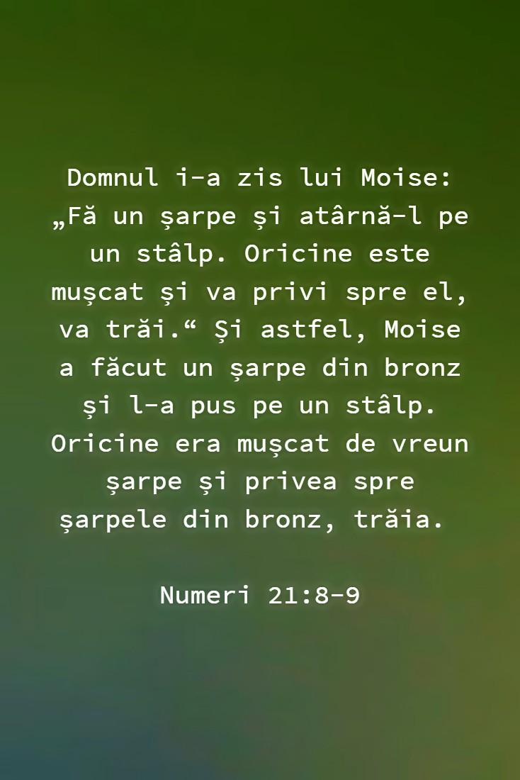 """Domnul i-a zis lui Moise: """"Fă un șarpe și atârnă-l pe un stâlp. Oricine este mușcat și va privi spre el, va trăi."""" Și astfel, Moise a făcut un șarpe din bronz și l-a pus pe un stâlp. Oricine era mușcat de vreun șarpe și privea spre șarpele din bronz, trăia. Numeri 21:8-9"""