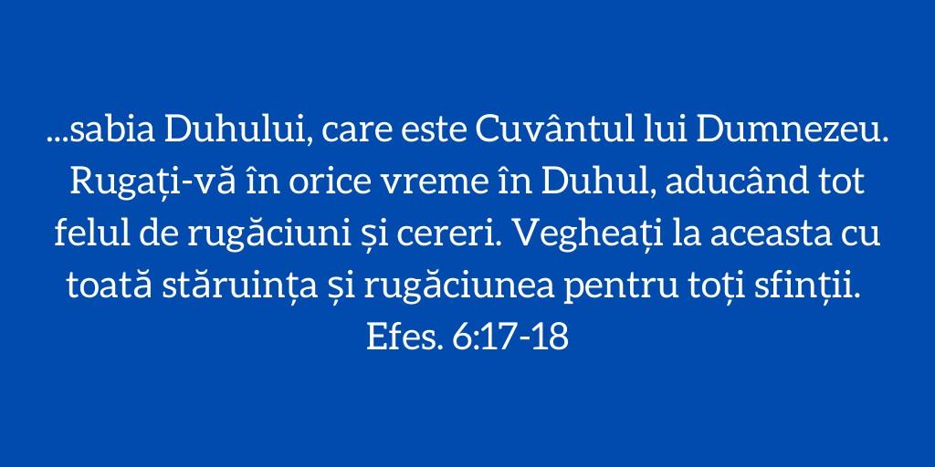 ...sabia Duhului, care este Cuvântul lui Dumnezeu. Rugați‑vă în orice vreme în Duhul, aducând tot felul de rugăciuni și cereri. Vegheați la aceasta cu toată stăruința și rugăciunea pentru toți sfinții. Efes. 6:17-18